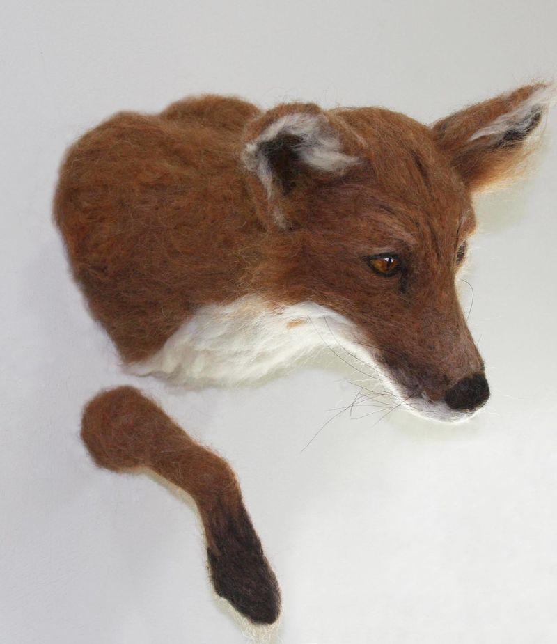 Red-fox_trandmigration